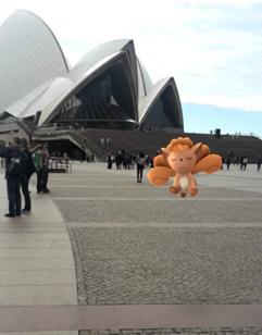 Vulpix at the Sydney Opera House (Max Sefton)